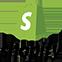 mini logo shopify